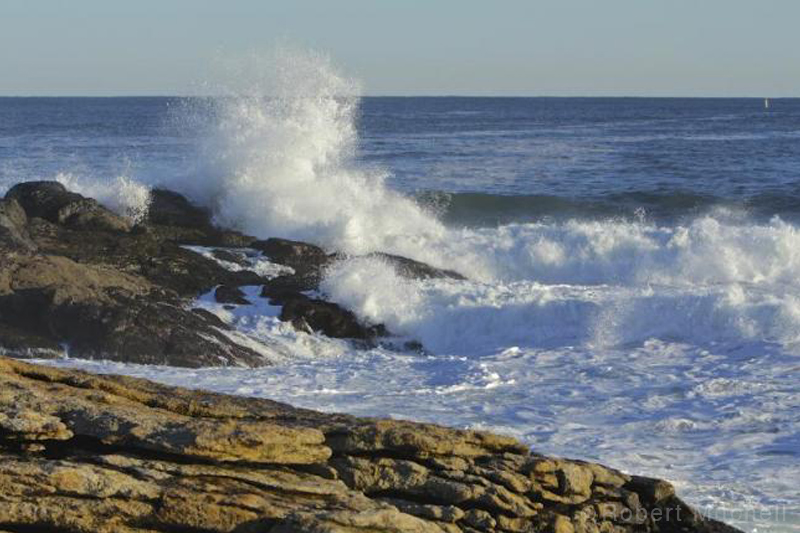 ocean-point.jpg