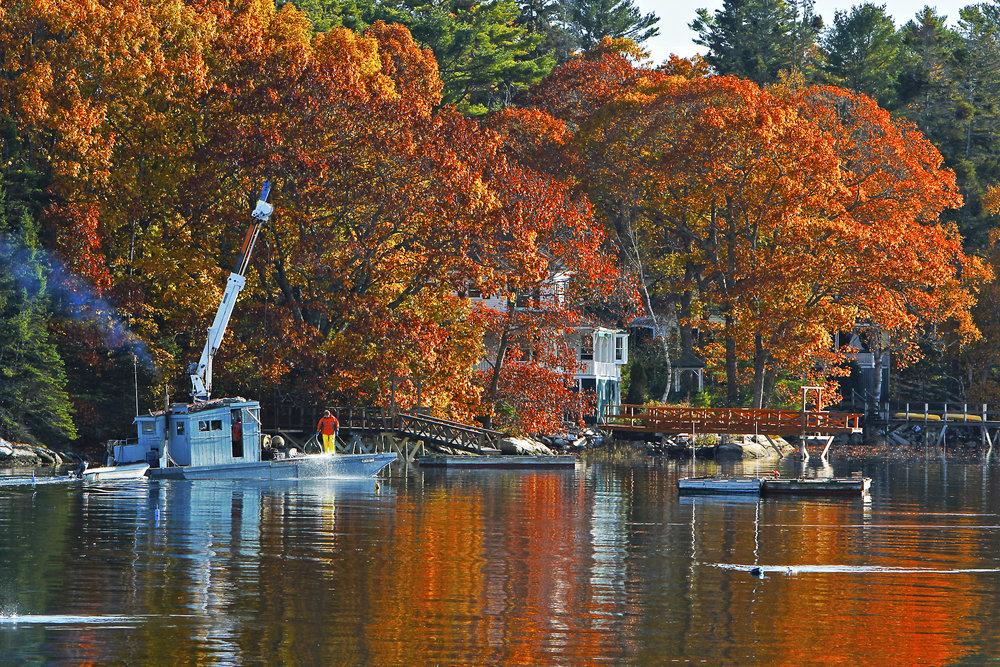 November: McKown Point