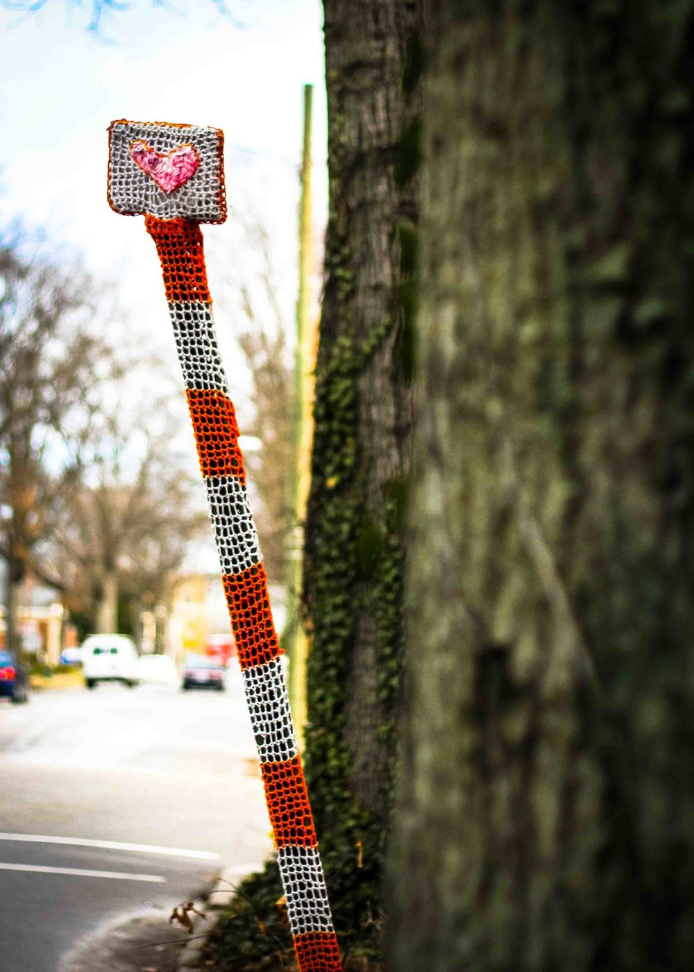 I see you.  As of January, there are 30 Richmond sign posts adorned with yarn.