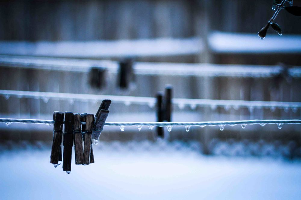 Richmond was hit with lots of snow, sleet, and freezing rain.  Everything in the backyard was covered in a layer of ice.