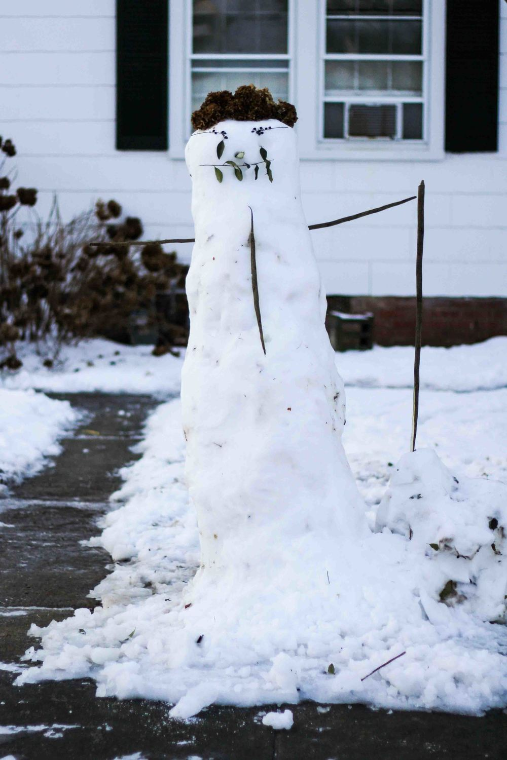 My next door neighbor, Andy, and his girlfriend made a handsome snowman. Btw, check out Andy's food truck, Popping Mealies.
