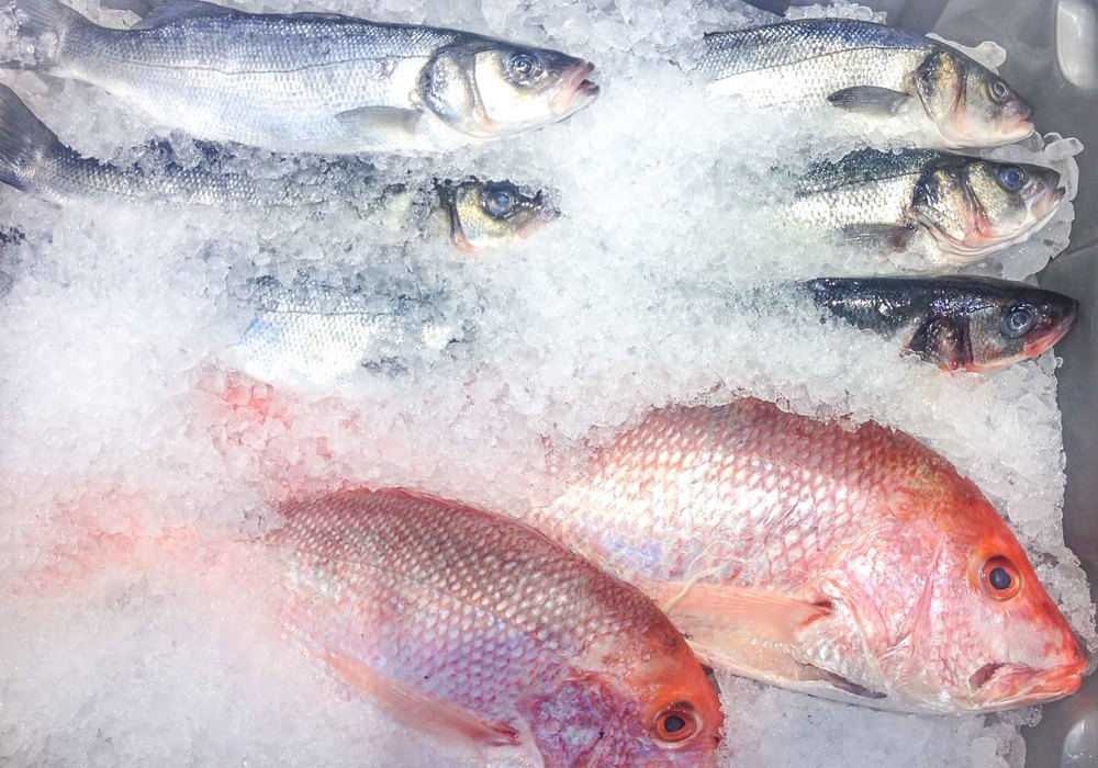 I was enchanted by the display of sea bass and snapper at Whole Foods. One of these days I'll get around to cooking a whole fish.