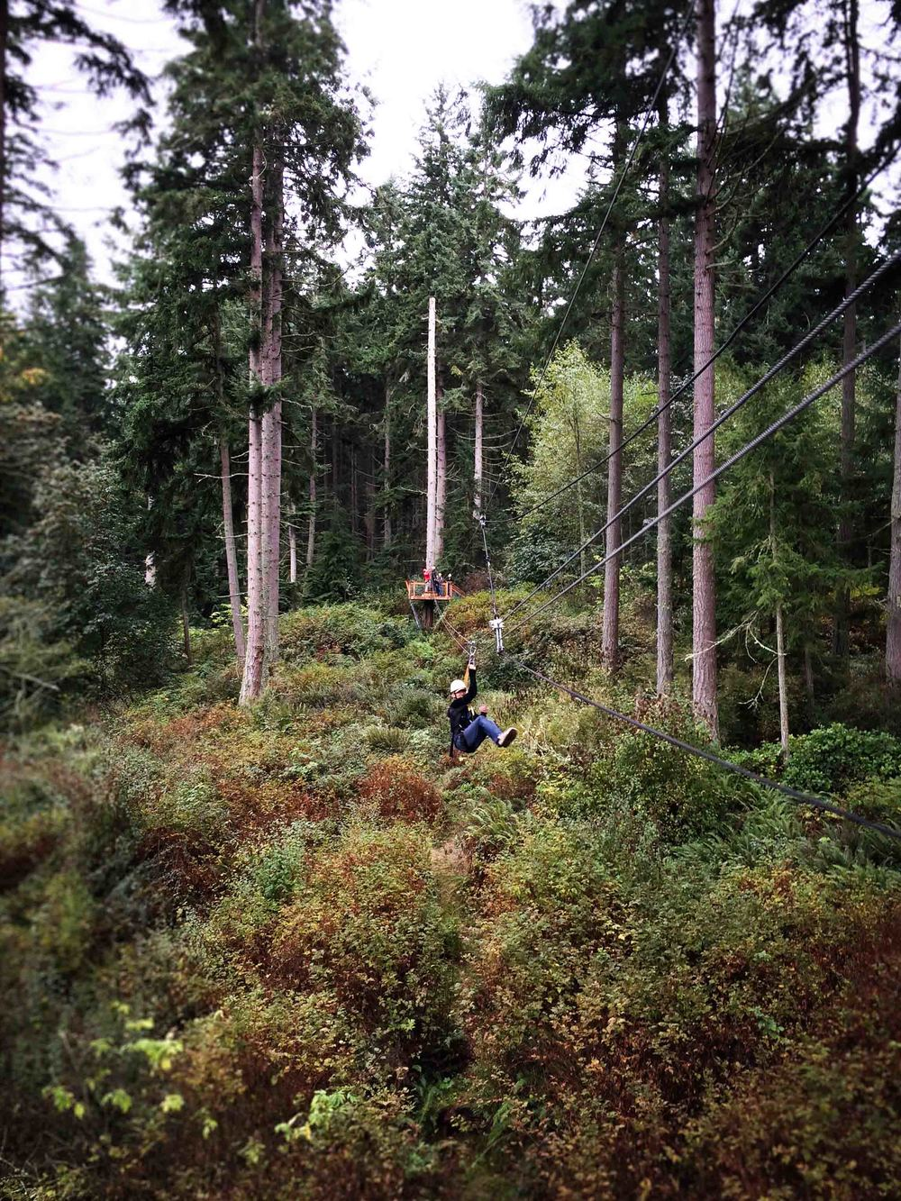 Zipping through the woods of Camano Island