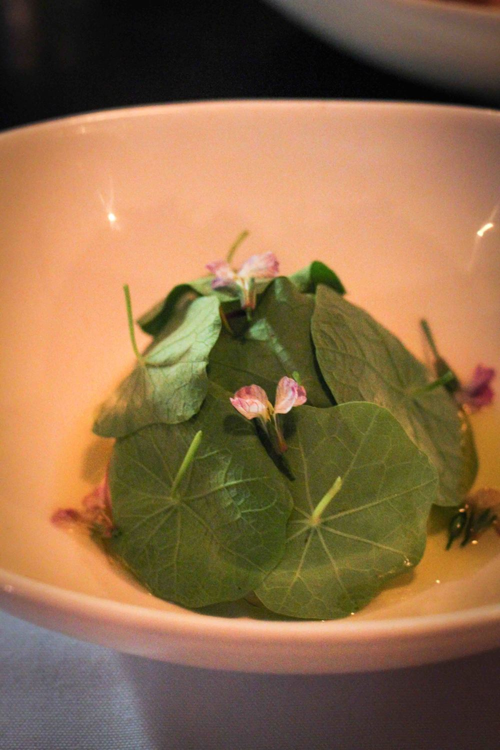 Whipped ricotta with nastarium, radish blossoms and olive oil