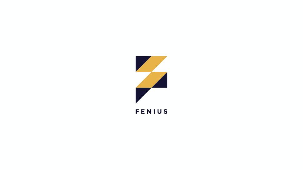 FENIUS_IDENTITY+DASHBOARD_ITERATION.compressed-12.jpg