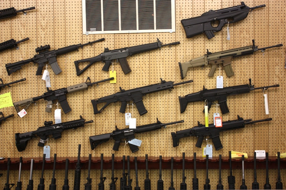 Gun store, East Dundee, IL / Photo credit: Susannah Breslin