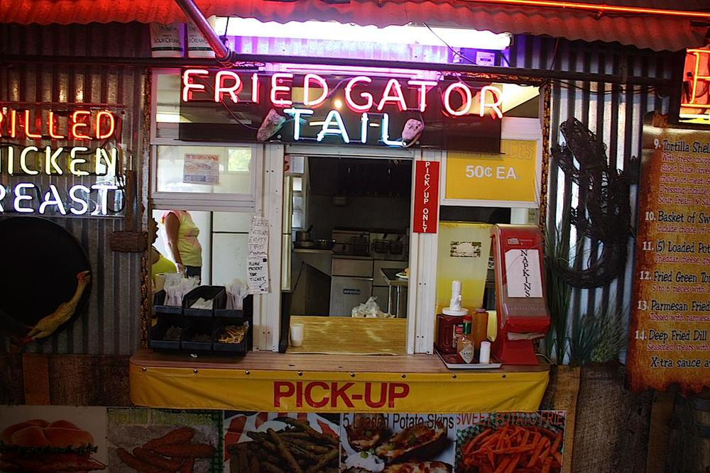 Fried gator tail, Fort Myers, FL / Photo credit:  Susannah Breslin