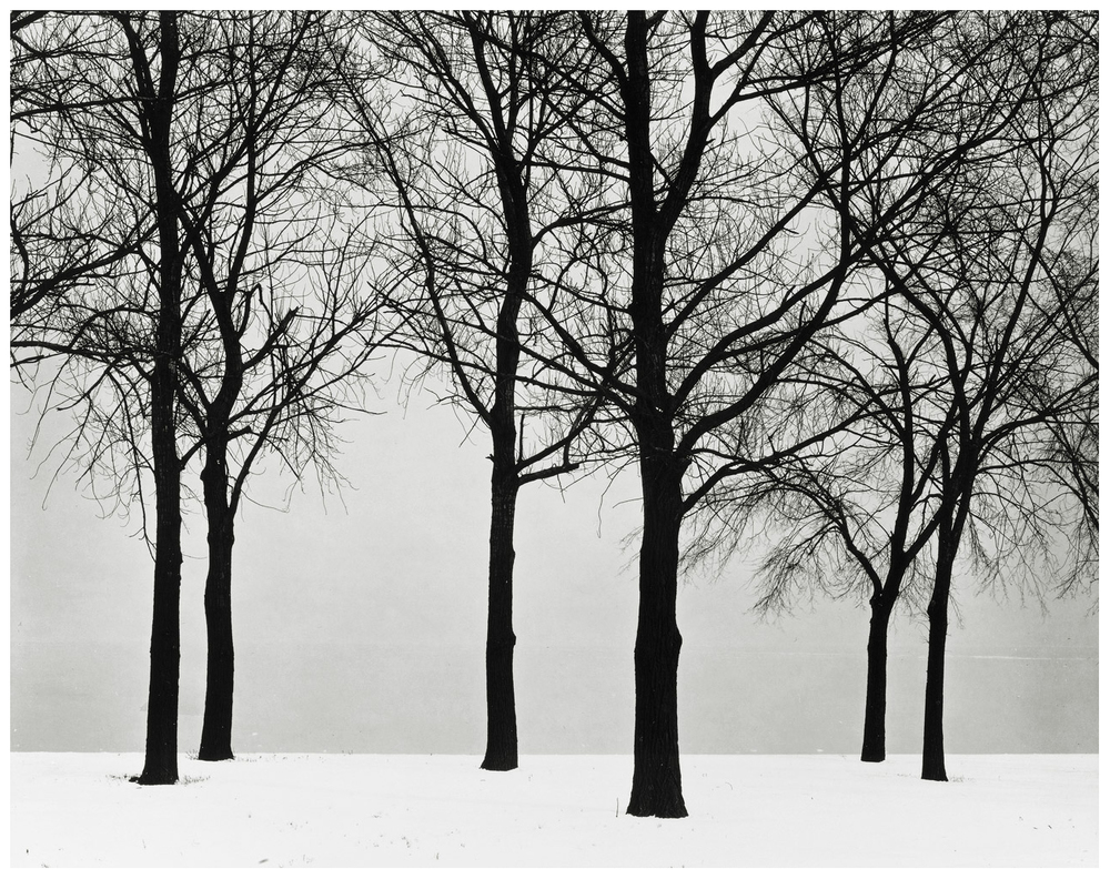 Photo credit: Harry Callahan (via This Isn't Happiness)