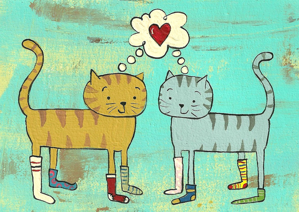 cat (2).jpg