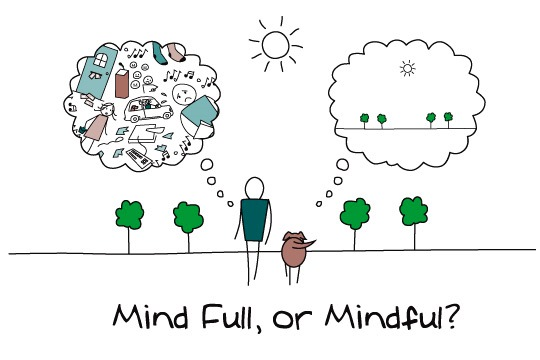 The Way our minds work  Most of the time our minds are concerned with anything but what we are doing and experiencing in the present moment. We are mostly attached to what happened in the past or fantasize about what may happen in the future. We are telling ourselves stories instead of focusing on what is happening right now.  The antidote is Mindfulness.  What is Mindfulness?  Mindfulness is the practice of focusing attention on the present moment -- accepting it without judgment. It's living from moment-to-moment, calmly accepting your thoughts and feelings instead of chasing after a futuristic ideal. It's a simple practice with rich benefits, the main one being that it leads to a sense of peace.  What happens when you have peace of mind? It affects every aspect of your physical, emotional, mental and spiritual state. It reduces fear and gives you a greater sense of clarity. What was difficult becomes easier. It's that simple.  Start your Mindfulness Practice  The Three-Breaths-Exercise  Sit quietly, shake out your hands (we hold a lot of stress in our hands). Put your hands in your lap and close your eyes, if that feels comfortable to you. Now focus on your breath, take a deep inhale and count 1, exhale count 2. And go again, take a deep inhale and count 1, exhale count 2. And go again, take a deep inhale and count 1, exhale count 2.  Easy! Right? Enjoy the calmness!    SELECT   to learn more about Maggie Sayers (Florida).   VIEW   Maggie's entire blog.