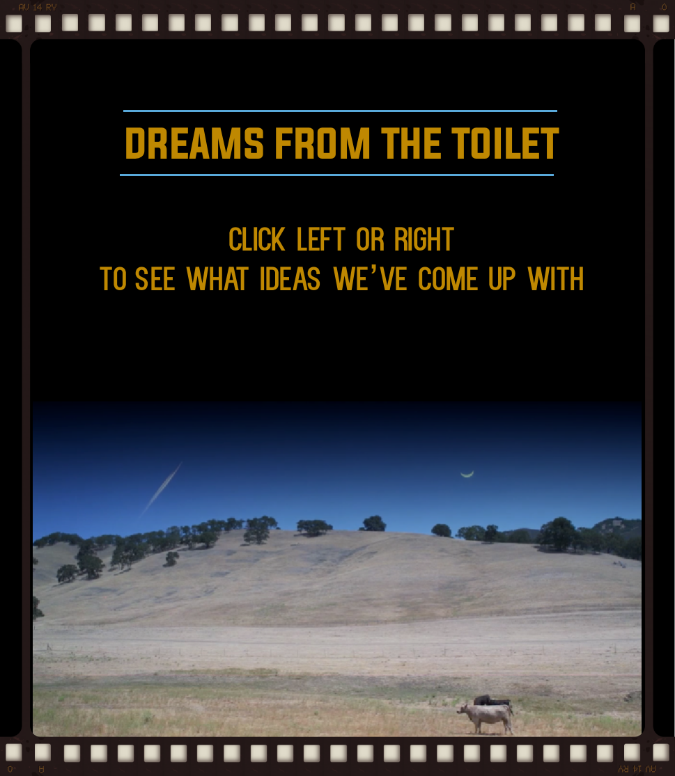 dreams from the toilet