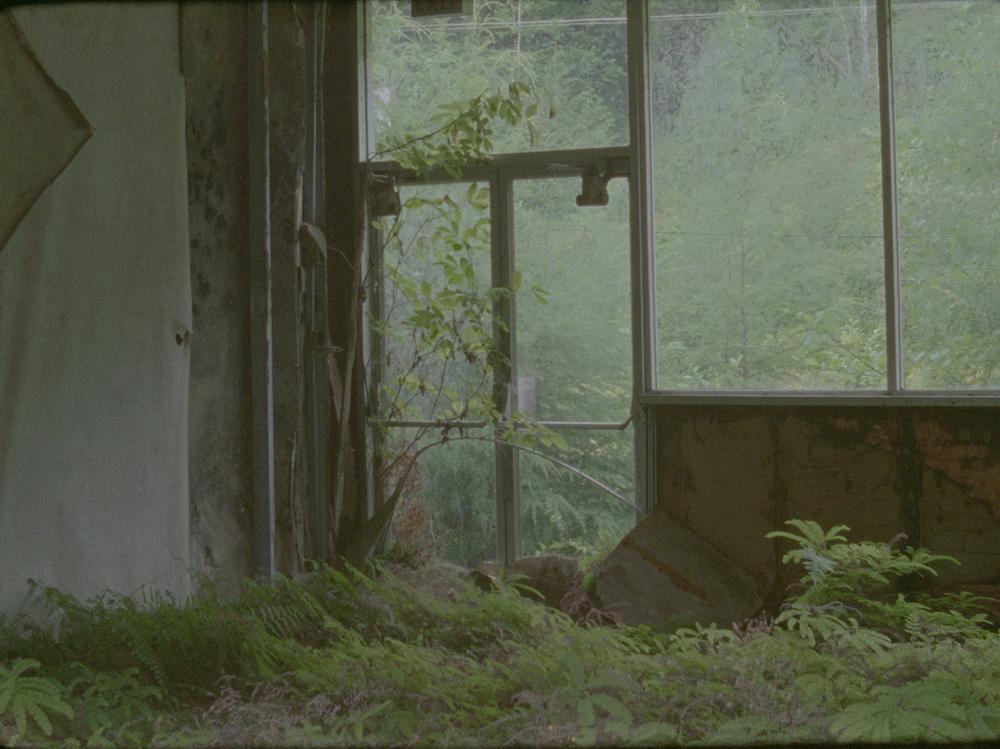 FilmStill_2.jpg
