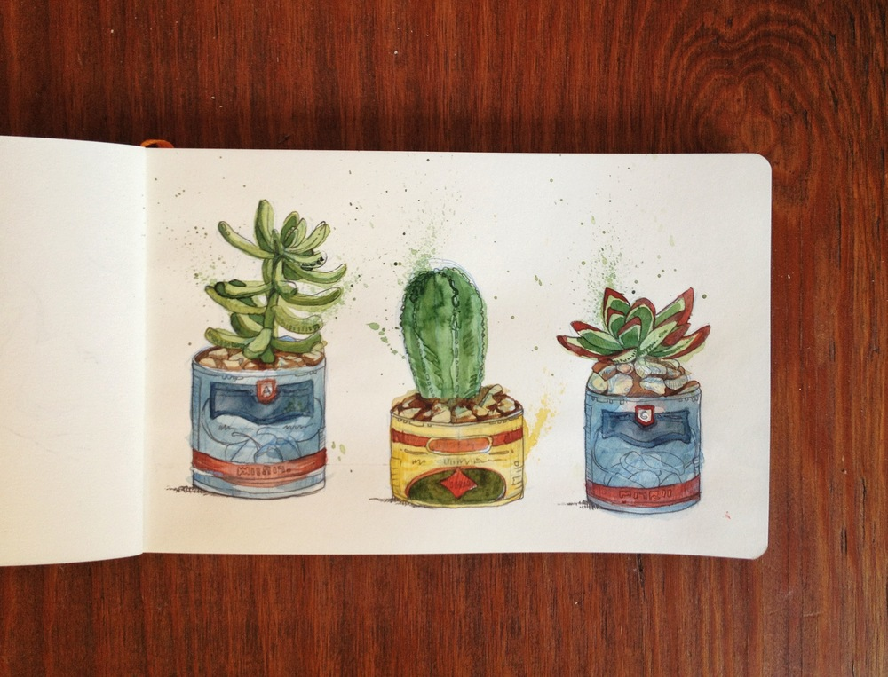 Sketch of Succulents by Chloe Yingst | chloedraws.com