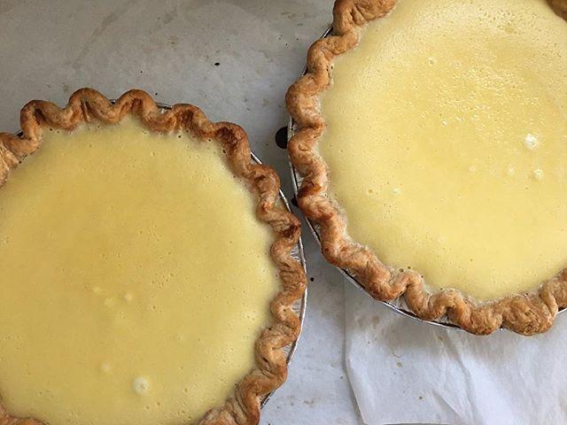 Meyer Lemon Chess Pie 🍋 #pie #lemon #meyerlemon #eatpie