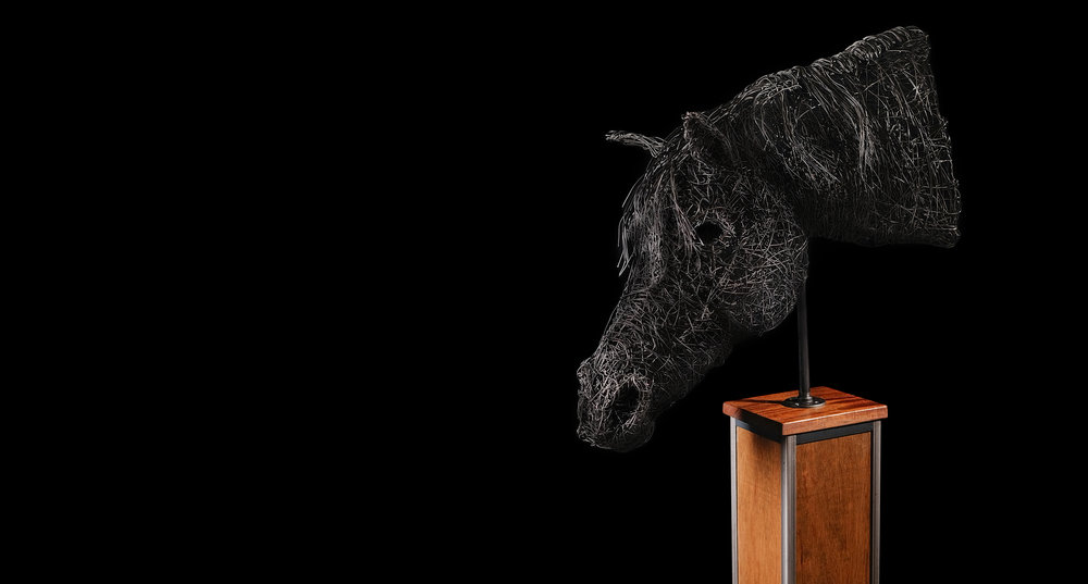 Horse-head1.jpg