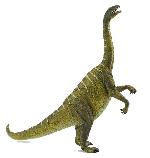 Procon Plateosaurus.png