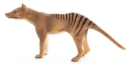 mojo_thylacine__94078_zoom.jpg