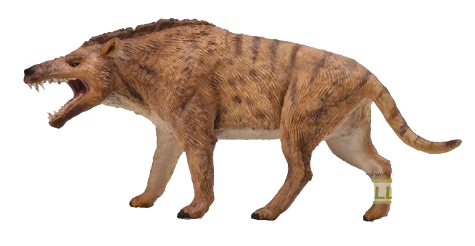 Collecta Deluxe Andrewsarchus