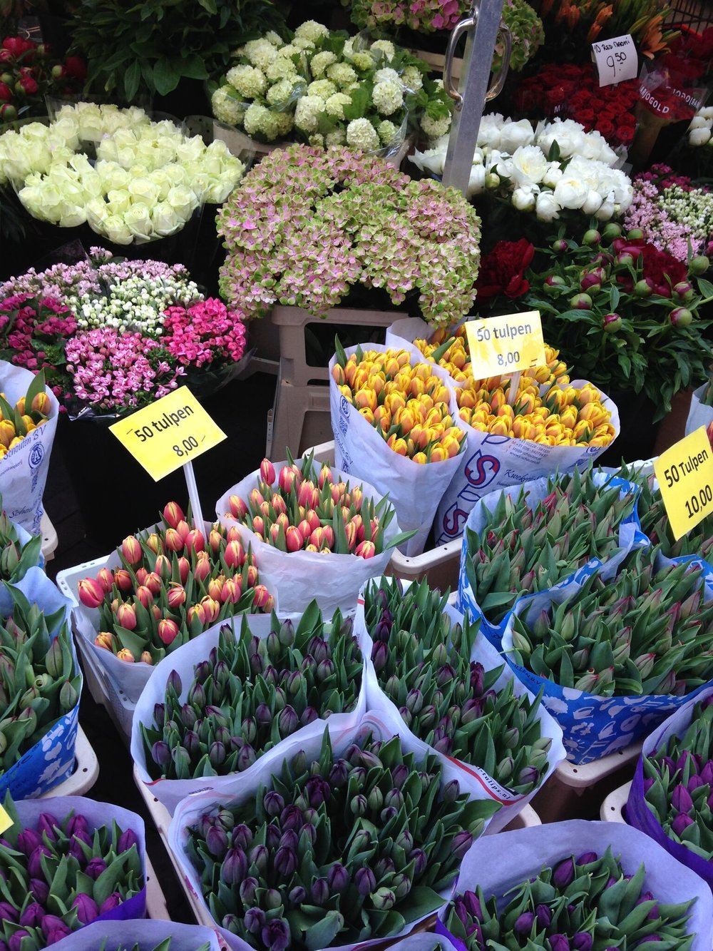 Of course, many know that Holland is known for its tulips, bulbs, and flowers.  As we walked along one of the canals, there were thousands, probably millions of flowers and bulbs for sale at the canal-side vendors.  They were beautiful!  We didn't get any.  No room in our luggage!