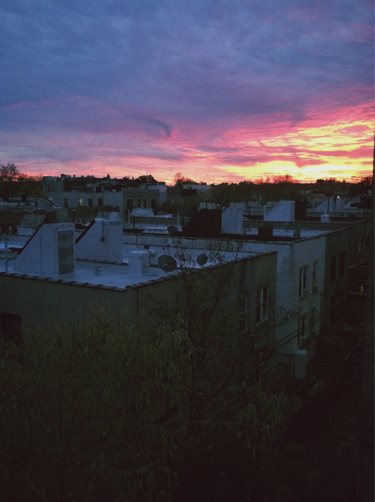 Sunset on my back porch in Prospect Lefferts Gardens