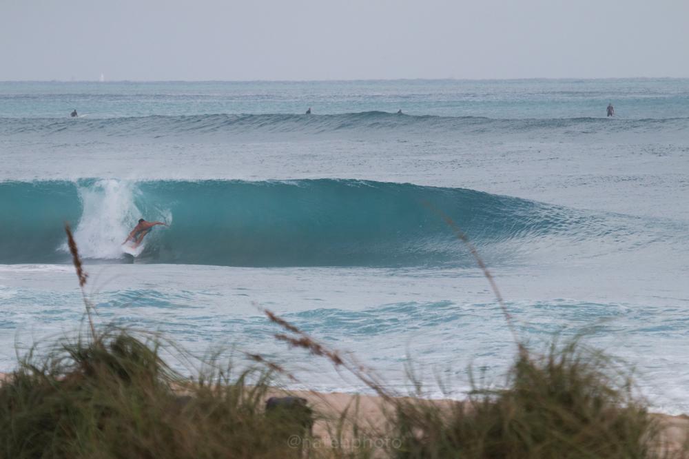 JanuarySwell_ReefRoad_Florida_natehphoto-4157.jpg
