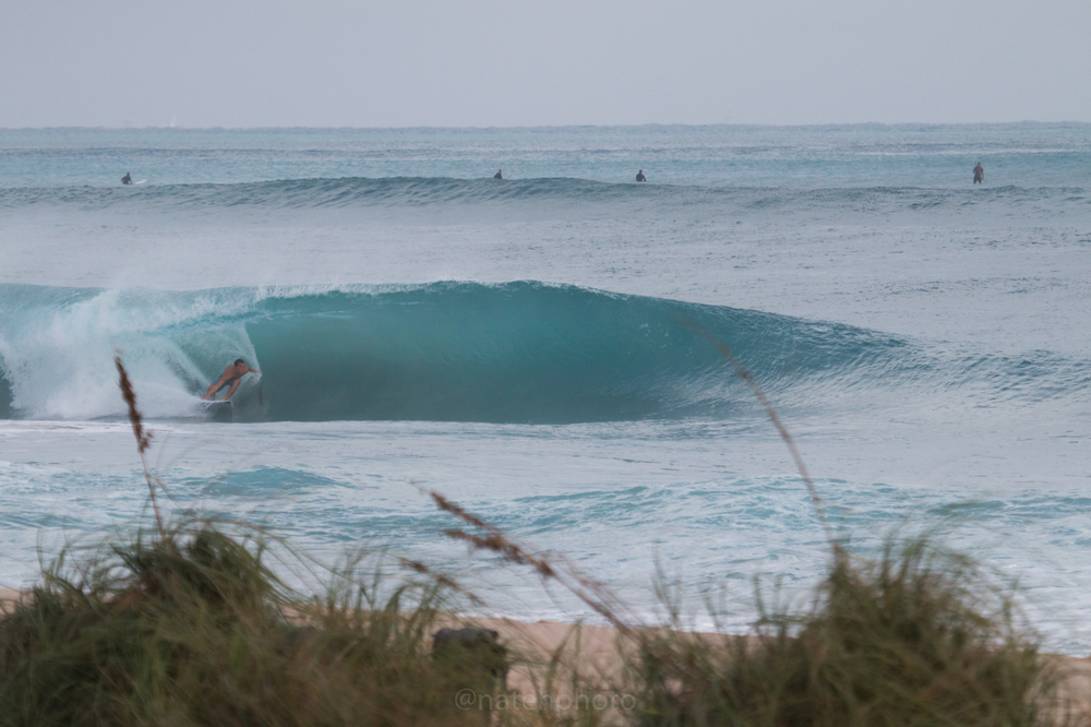 JanuarySwell_ReefRoad_Florida_natehphoto-4160.jpg