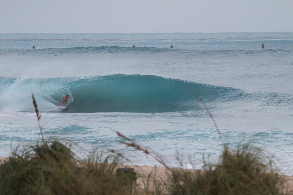 JanuarySwell_ReefRoad_Florida_natehphoto-4161.jpg