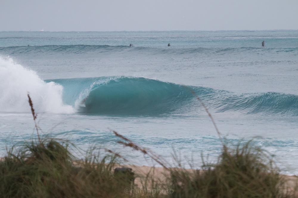 JanuarySwell_ReefRoad_Florida_natehphoto-4168.jpg
