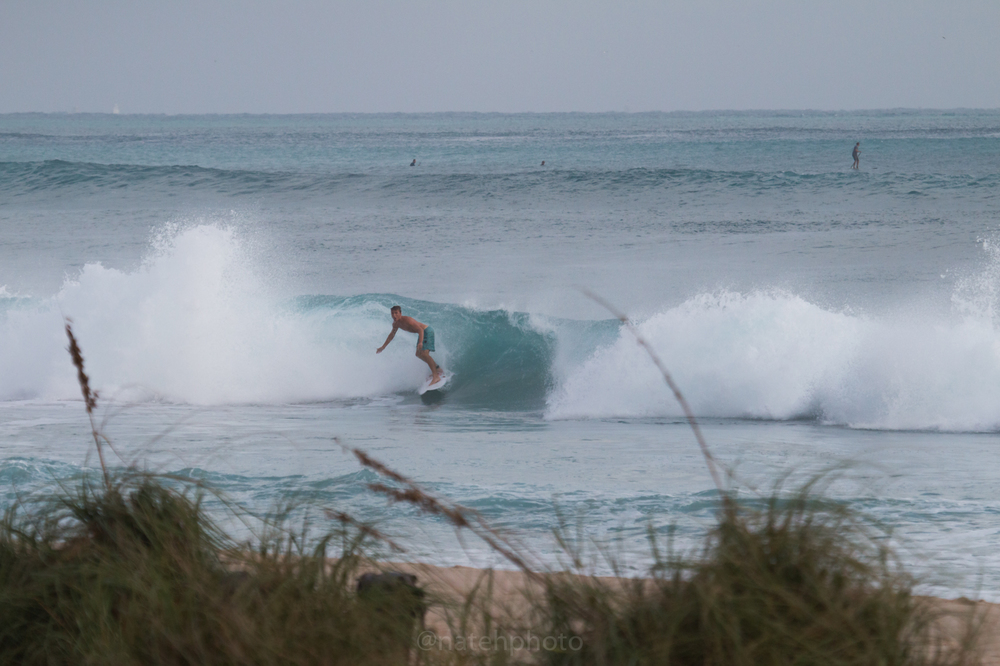 JanuarySwell_ReefRoad_Florida_natehphoto-4174.jpg