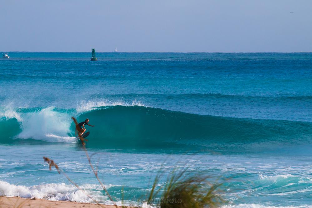JanuarySwell_ReefRoad_Florida_natehphoto-4262.jpg