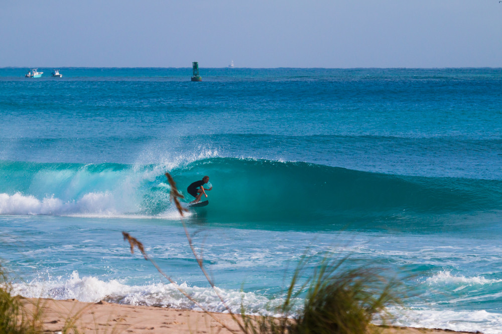 JanuarySwell_ReefRoad_Florida_natehphoto-4265.jpg
