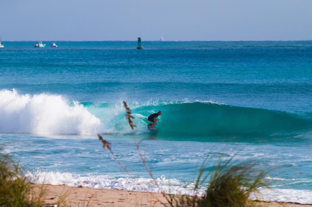JanuarySwell_ReefRoad_Florida_natehphoto-4268.jpg