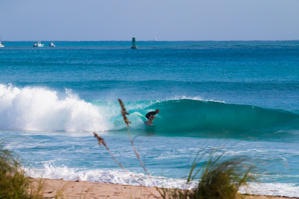 JanuarySwell_ReefRoad_Florida_natehphoto-4269.jpg