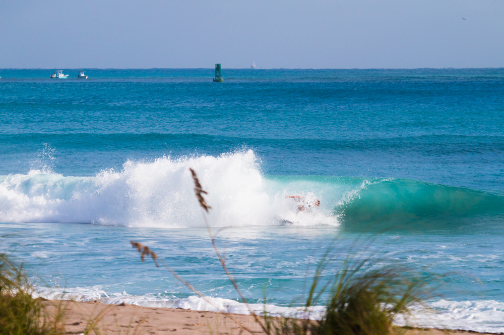 JanuarySwell_ReefRoad_Florida_natehphoto-4277.jpg