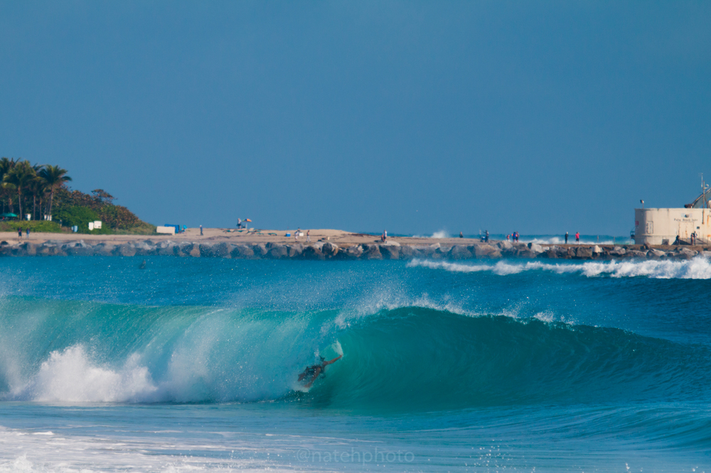 JanuarySwell_ReefRoad_Florida_natehphoto-4345.jpg