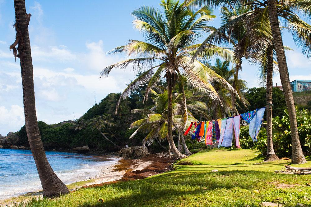 Barbados_Nov2015_natehphoto-1680.jpg