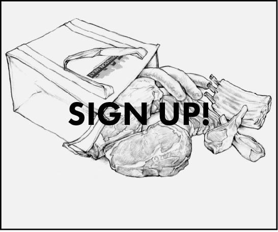 Website Share Sign Up .png