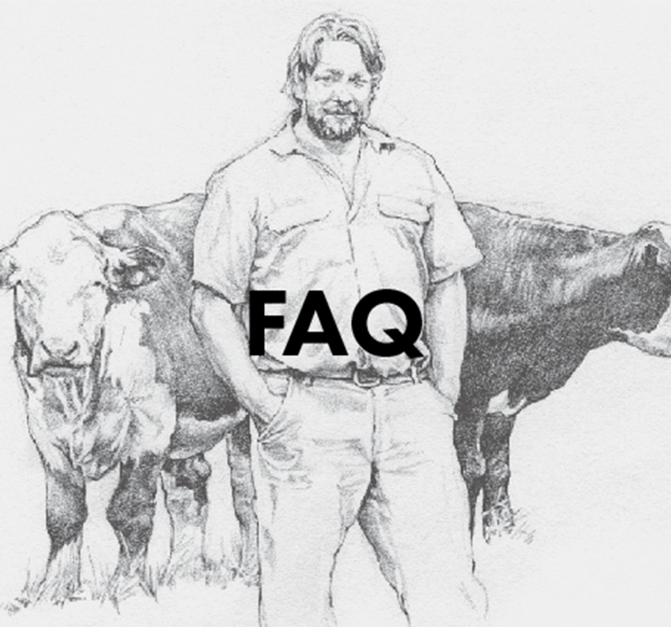 FAQ New.png