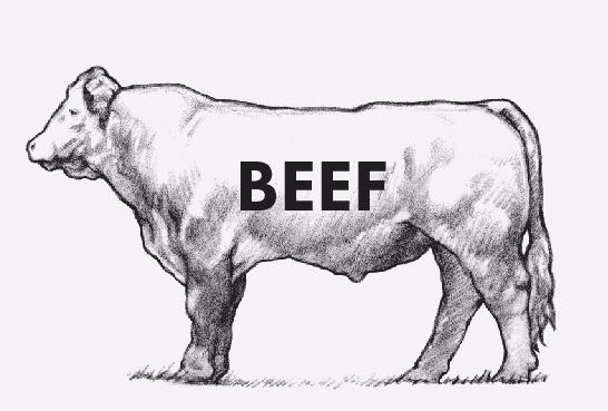 website+beef+recipes+pic.jpg