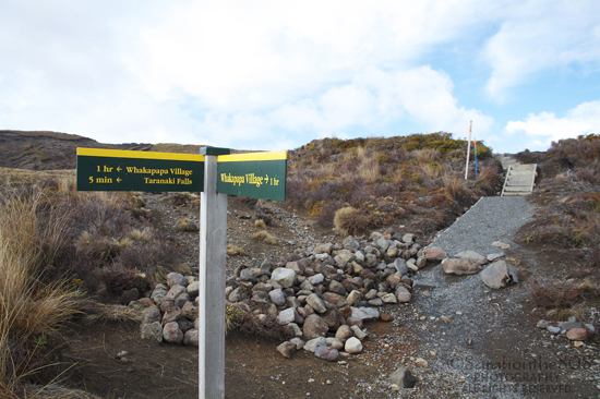 This sign post marks the crossroad between trails, and is the midway point on the Taranaki Falls Track. Notice nearby lava formations that are more than 15,000 years old. Passing hikers tell me the falls is right down the trail.