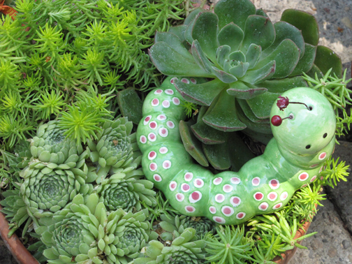 J. Woeste Home and Garden Treasures in tiny Los Olivos truly holds treasures in the form of adorable ceramics for potted plants