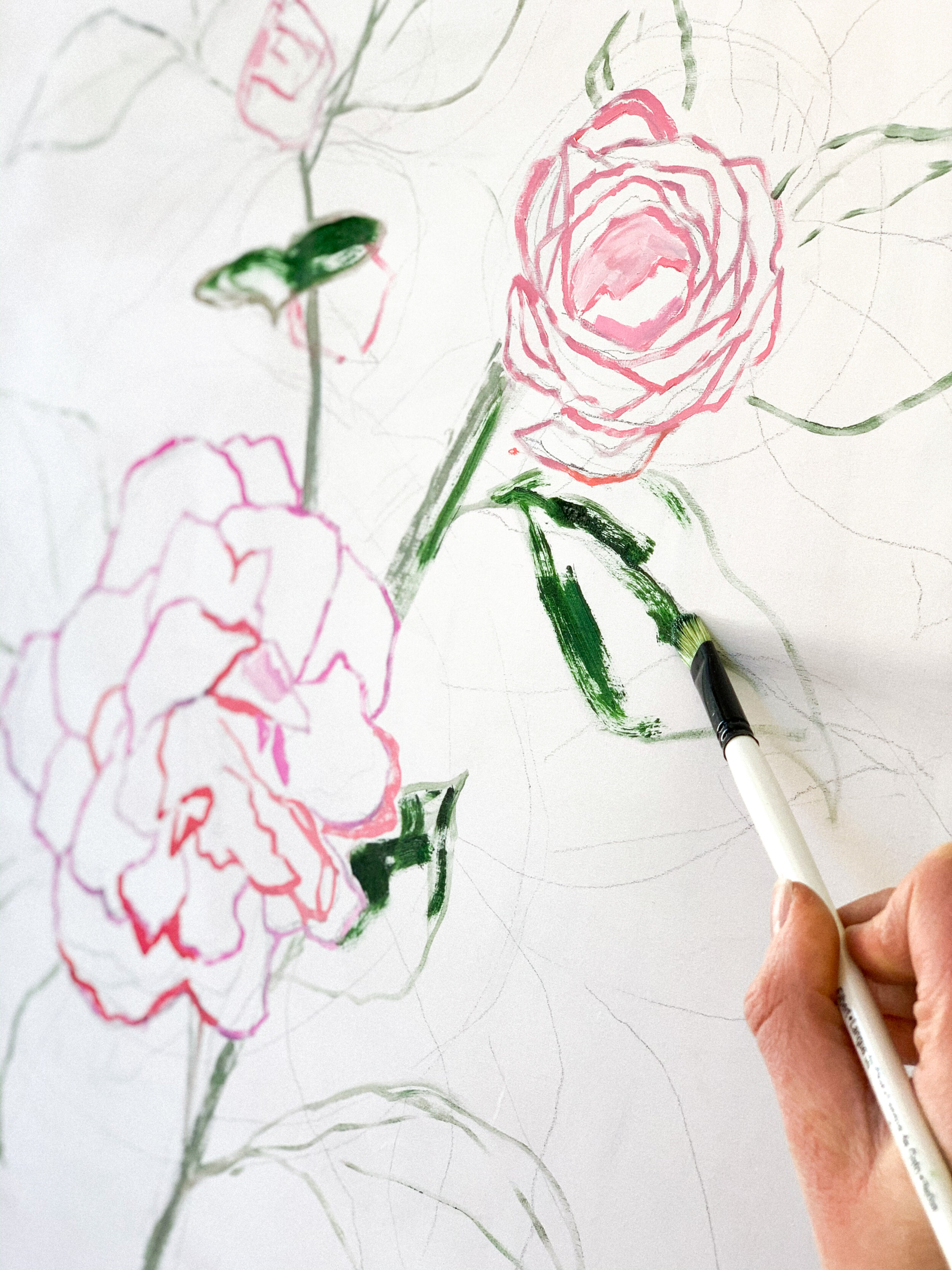 Started on a special Camellia commission