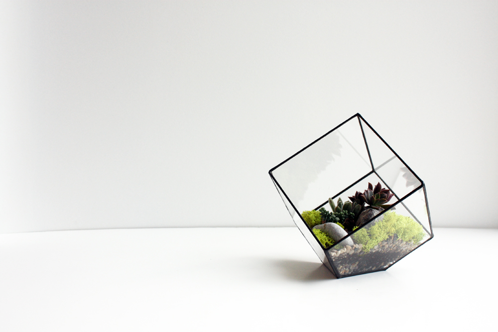 FACETED TERRARIUM _ 2.jpg