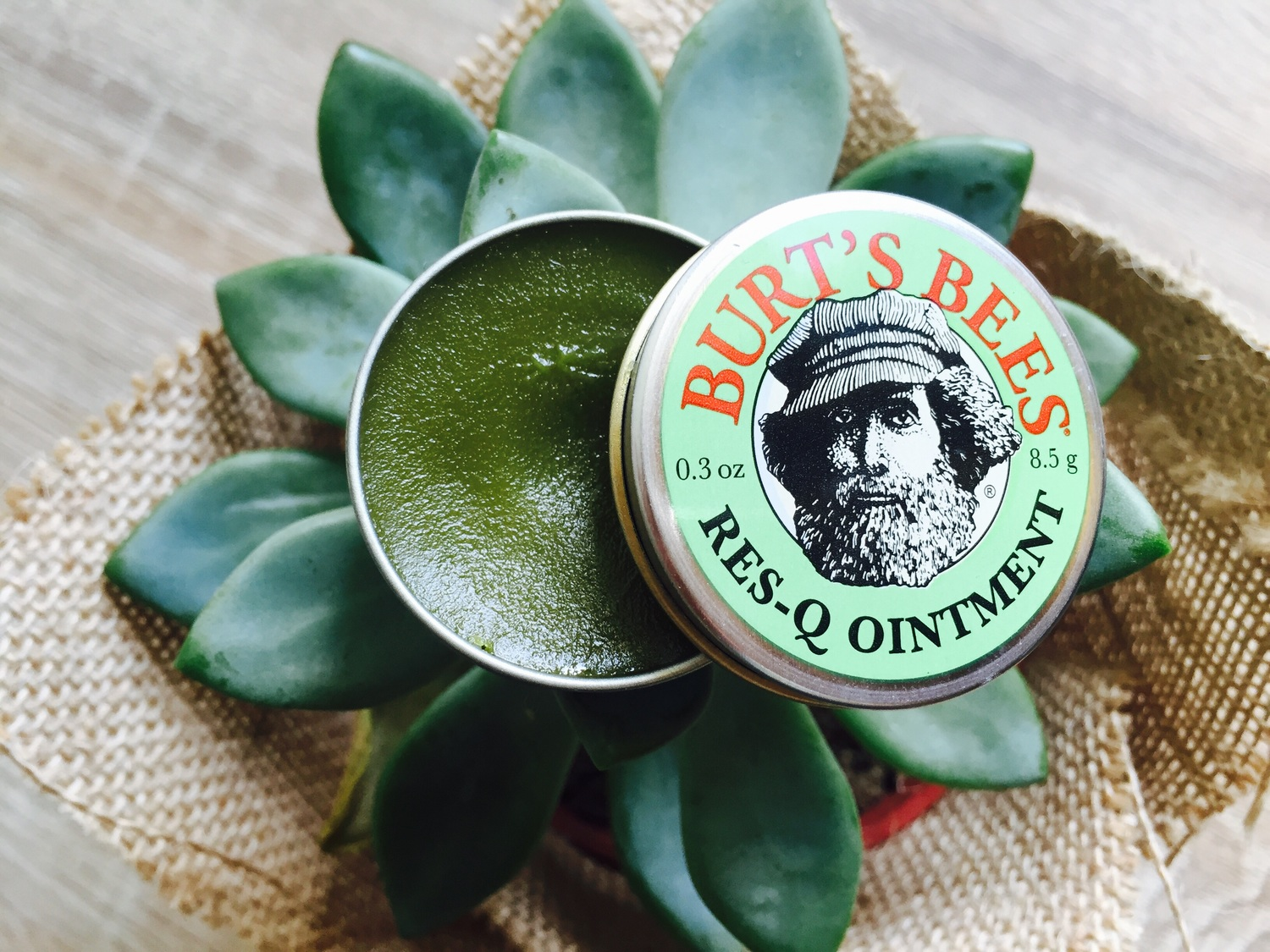 The Burt's Bees Res-Q Ointment is a fix-it-all — Project Vanity