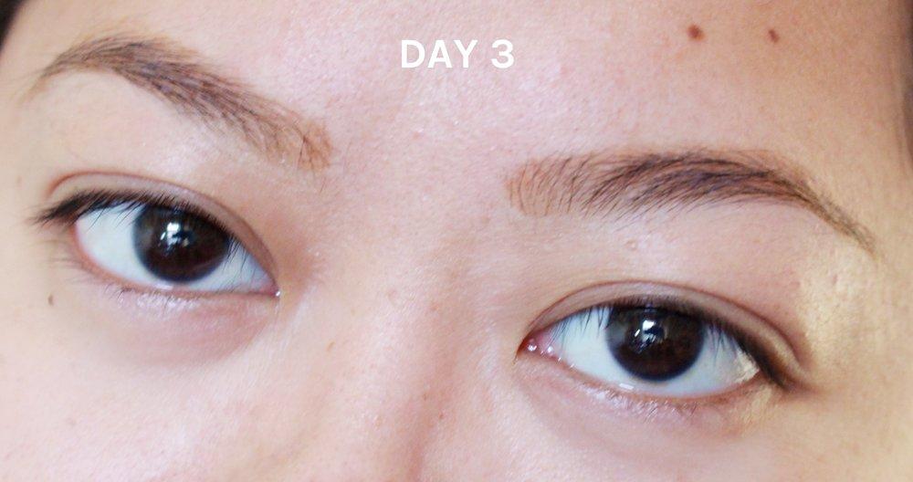 day 3.jpg