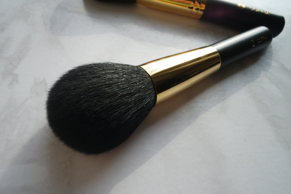 Opulence Soft Focus Brush (P2,850)