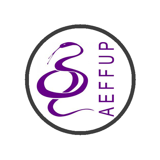AEFFUP  (Associação de Estudantes da Faculdade de Farmácia da Universidade do Porto)