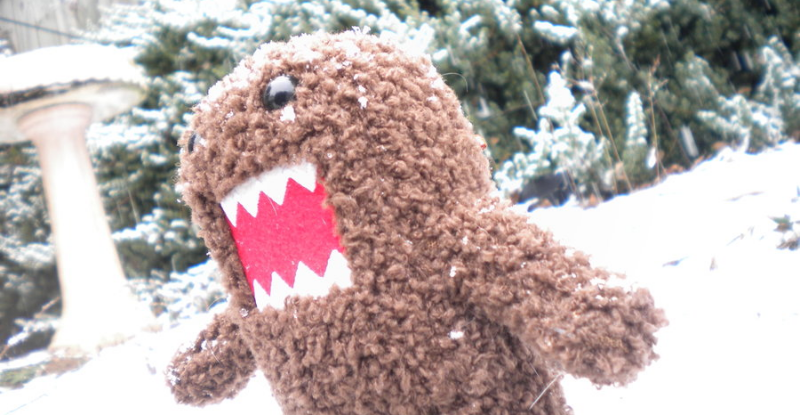 Domo__s_Snow_Day_by_AkatsukiAkuma53421.jpg