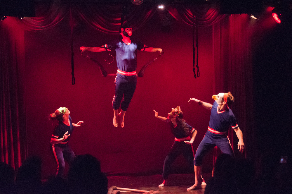Brent Rose (aloft)     photo by Marielle Solan