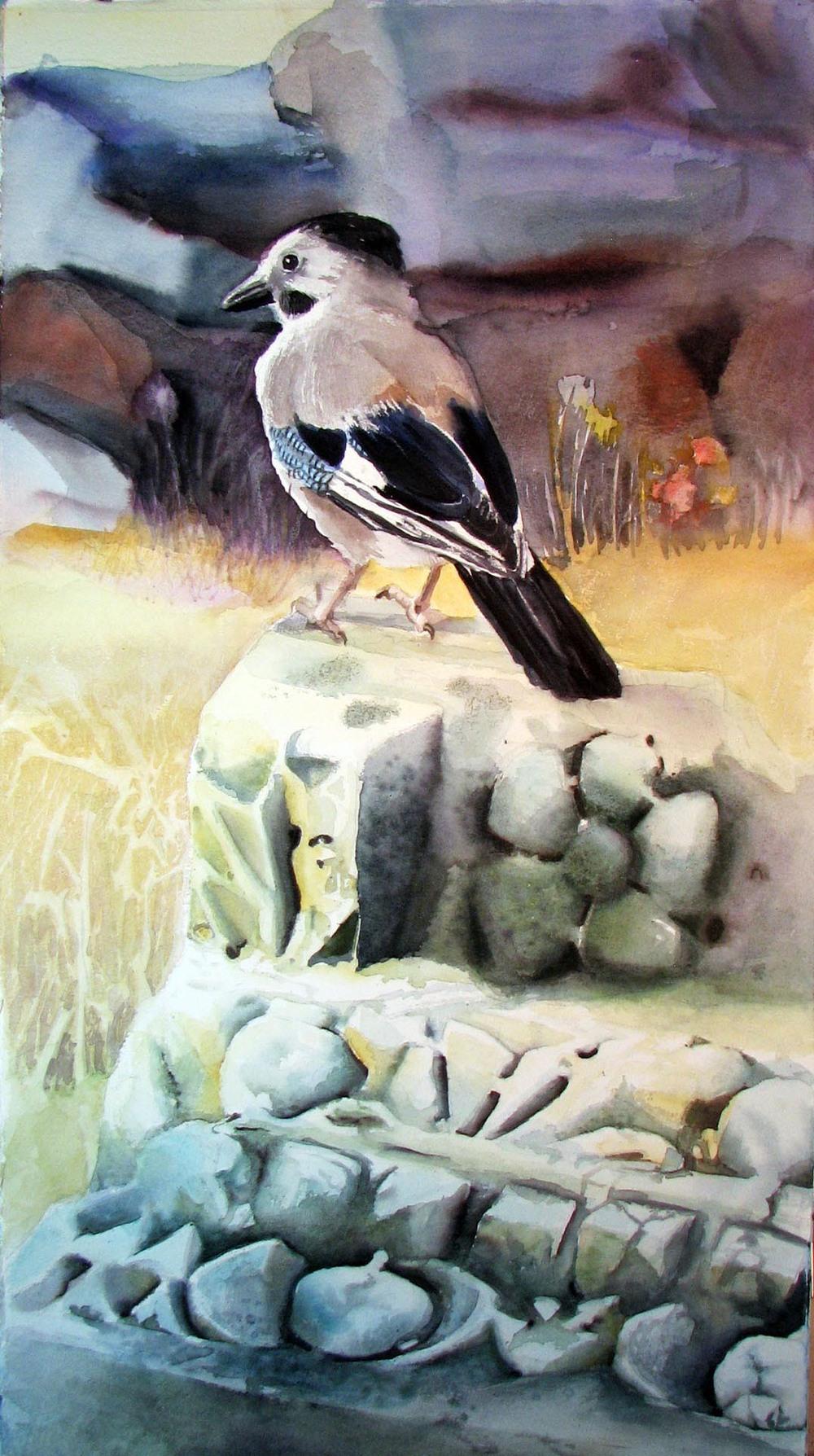 Capernaum Crow